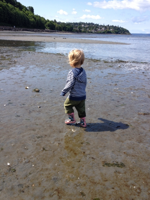 Low Tide Walk