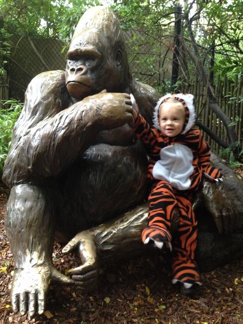 Gorilla Mama