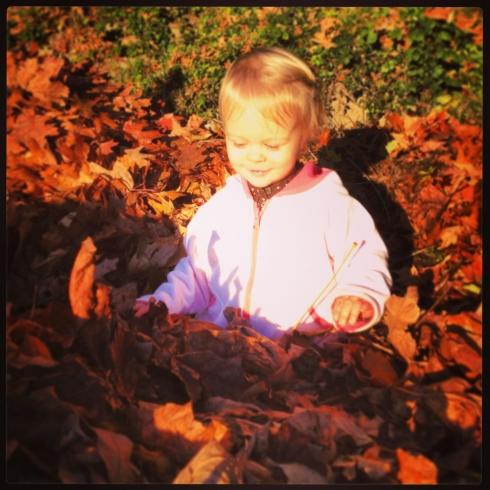 Swimming through a leaf pile